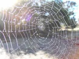 How To Make A Spider Web Dream Catcher 100 Alternate Dream Catchers Lessons Tes Teach 43