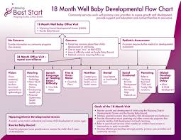 Baby Growth Development Chart 2 Baby Development Chart Templates Free Templates In Doc