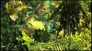 jungle background. Contemporary Jungle Background Jungle And P