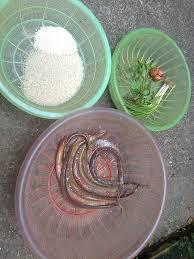 nguyên liệu nấu cháo lươn