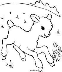 Small Picture Sheep coloring pages printable ColoringStar