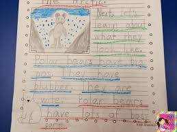 part ii raising the bar writing our paragraph essays so he wrote about what polar bears look like in the second paragraph of his essay