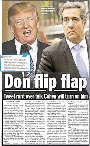 Image result for michael cohen daily news