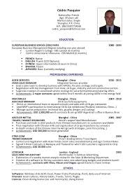 resume travel consultant