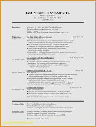 Resume Format For Experienced In Ms Word Luxury Word Resume Template ...