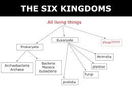 Bacteria And Viruses Venn Diagram Venn Diagram Of Prokaryotes Eukaryotes And Viruses