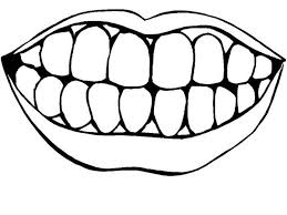 Small Picture Picture of Healthty Teeth in Dental Health Coloring Page Color Luna