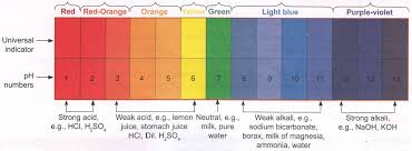 Color Chart For Universal Indicator What Is The Definition Of Indicator In Chemistry A Plus Topper
