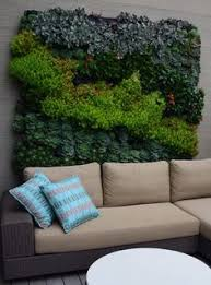 Small Picture Custom built vertical gardens for succulents Botanical Space