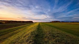 grass field background. 1920x1080 Wallpaper Road, Roadside, Grass, Field, Open Spaces Grass Field Background C