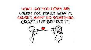 Crazy Love Quotes Impressive Crazy Love Quotes Business Quotes