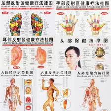 7pcs Set Massage Point Map Acupressure Acupuncture Chinese English Meridian Points Posters Chart Wall Map For Medical Practising