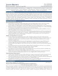 Sample Resume For Experienced Business Development Manager New
