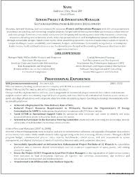 Professional Resume Services Resume Writing Services Dc Resume