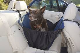 Dog Hammock Car Seat Covers pared DogCulture