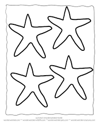 523776f475db2954655d5cdd8d35f6bf the 25 best ideas about starfish template on pinterest beaded on html templates for ebay listings