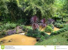 furnas azores portugal june 27 2017 stream of natural mineral water of yellow color across terra nostra garden located in furnas town on sao miguel