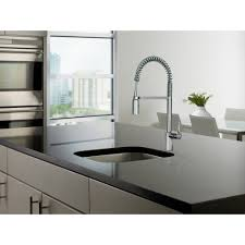 How To Choose A Kitchen Faucet Best Pull Out Kitchen Faucet Rafael Home Biz Throughout Moen