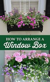 193 best windows and flowers in bo oh my images on flower bo window bo and window planter bo