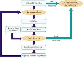Soil Classification Chart Australia Introduction To Soil Salinity Sodicity And Diagnostics