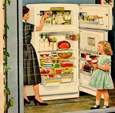 Resultado de imagem para geladeira cheia