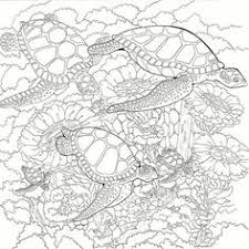 Small Picture Sea Turtles Coloring Pages Printable coloring pages Pinterest