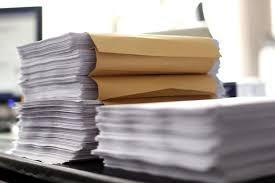 essay on bureaucracy