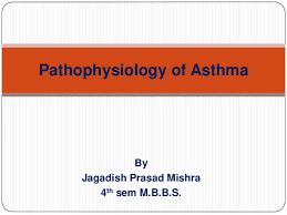 Asthma Pathophysiology Flow Chart Pathophysiology Of Asthma