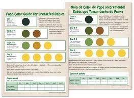 Diaper Chart Newborn Poop Color Guide For Breastfed Newborns Noodle Soup