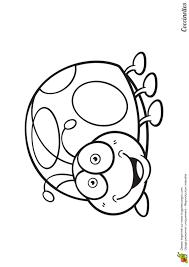 Coloriage Coccinelle Sur Hugolescargot Com