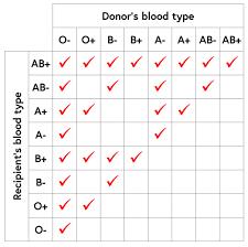 Logical Blood Group Chart Parent Child Parent Blood Type