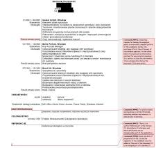 resume in english for job application professional resume cover resume in english for job application myperfectresume resume builder english german resume commentary good