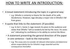 writing an essay introduction examples 165