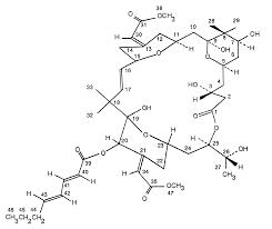 Bryostatin 2 chart iii