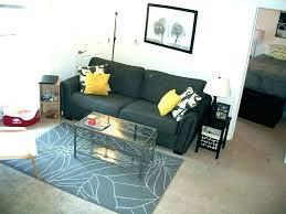 College Living Room Ideas Apartment