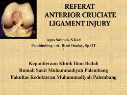 referat acl injury documents