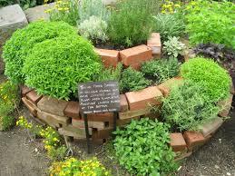 Herb Garden 14 Diy Herb Garden Ideas For Vertical Indoor Gardening Diy Craft