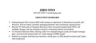 Executive Summary Resume Example Digitalpromots Com Creative Resume