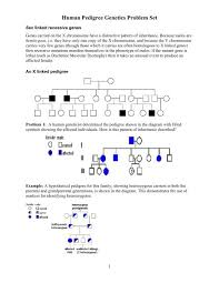 Muscular Dystrophy Pedigree Chart Answers Human Pedigree Problems Pdf