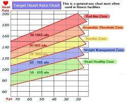 56 Prototypic Aerobics Chart