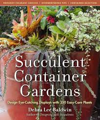 Small Picture 117 best Succulents Garden Ideas images on Pinterest Succulent
