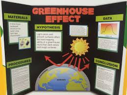 examples of poster board projects whats wrong with this picture biogeocoenosis