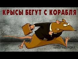 Информацию о заявлении об отставке подтверждаю, - Данилюк - Цензор.НЕТ 2765