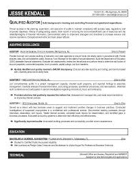 Internal Audit Resume Pelosleclaire Com