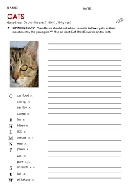 cats all things topics writing activity cats