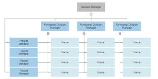 Organizational Domain Chart Four Types Of Organizational Charts Functional Top Down