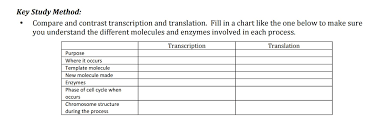 Solved Compare And Contrast Transcription And Translation