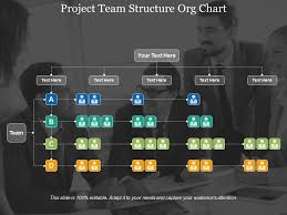Project Team Structure Org Chart Powerpoint Slide