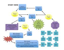 Pregnancy Day By Day Chart Our Current Pregnancy Process Flow Chart Myrtle The