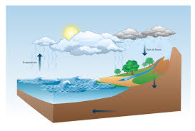 water cycle diagram   drawing illustration   drawing a nature    water cycle diagram